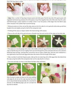 Katy Sue Flower Pro - Flower Pro book- Volume 1 (2)